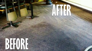 Carpet Cleaning Suttons Bay Leland Traverse City Northport